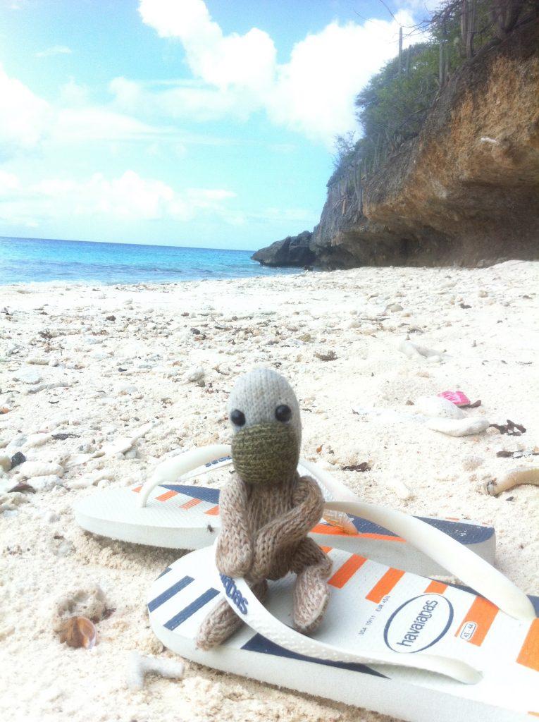 Artis de Partis op strand Playa Hulu, Curacao